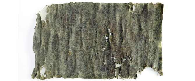 Ancient Curse Tablet Written 1,700 Years Ago